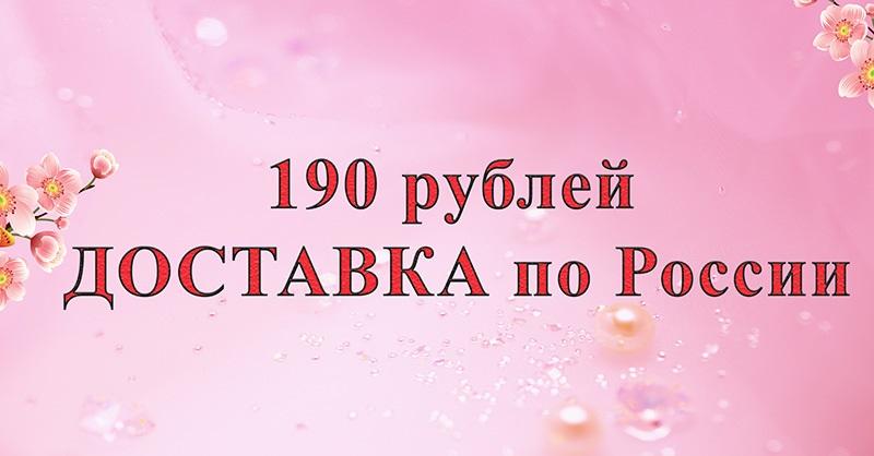 Доставка за 190 руб в любую точку России